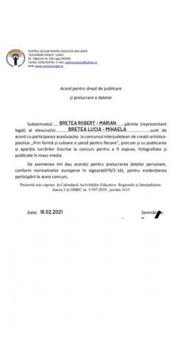 Acord Bretea Mihaela